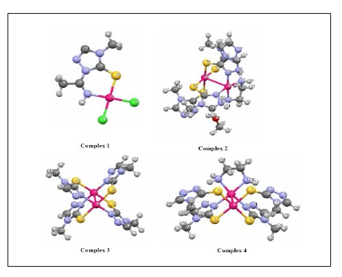 Theoretical Investigation of 4-Methyl-4H-1,2,4-triazole-3-thiol and Its Mononuclear and Dinuclear Palladium(II) Complexes; Molecular Structure, NBO Analysis, FT-IR and UV-Vis Spectroscopy